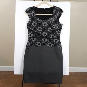 Ann Taylor Sheath Dress Lace Cap Sleeves 14 Tall